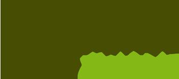 Domotics@Home Retina Logo